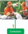 waste management collection